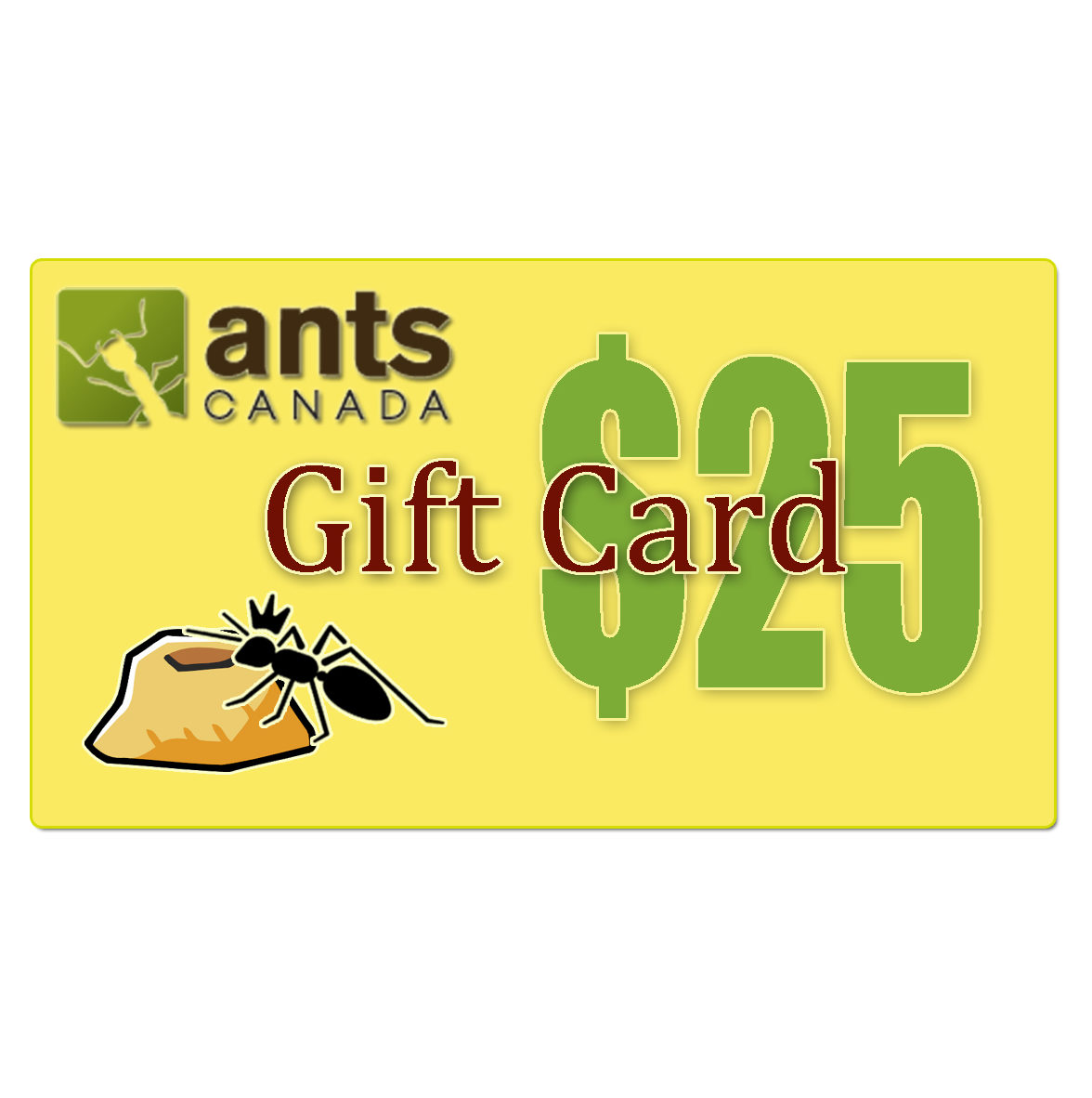 Home » Shop »... $25 Gift Card
