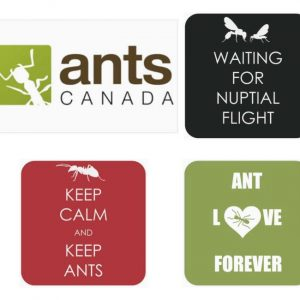 AntsCanada Stickers